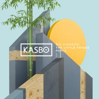 The Little Things (feat. Angela McCluskey) [Kasbo Remix] - Single - Big Gigantic mp3 download