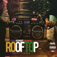 Roof Top - Single - Fly Street Gang mp3 download