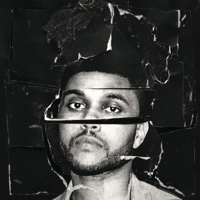 In the Night The Weeknd
