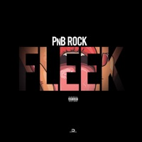 Fleek - Single - PnB Rock mp3 download