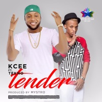 Tender (feat. Tekno) - Single - KCee mp3 download