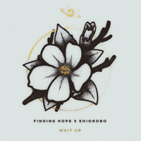 Wait Up (feat. Ehiorobo) Finding Hope song