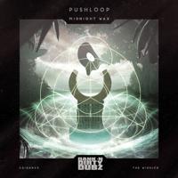 Kula Kula (The Widdler Remix) Pushloop