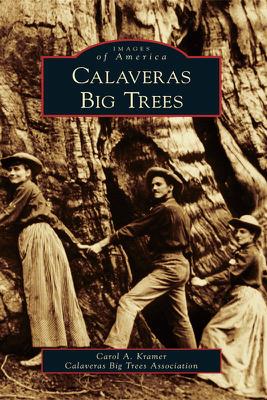 Calaveras Big Trees - Carol Kramer