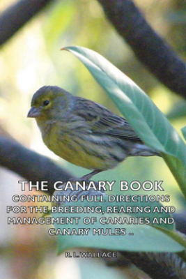 The Canary Book: Containing Full Directions for the Breeding, Rearing and Management of Canaries and Canary Mules - R. L. Wallace