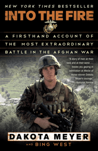 Into the Fire - Dakota Meyer & Bing West pdf download
