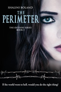 The Perimeter (Outside Series #3) - Shalini Boland pdf download