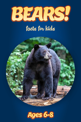 Facts About Bears For Kids 6-8 - Cindy Bowdoin