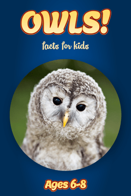Facts About Owls For Kids 6-8 - Cindy Bowdoin