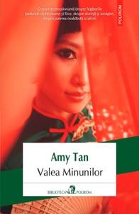 Valea Minunilor - Amy Tan pdf download