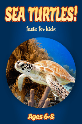 Facts About Sea Turtles For Kids 6-8 - Cindy Bowdoin