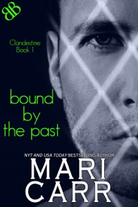 Bound By the Past - Mari Carr pdf download