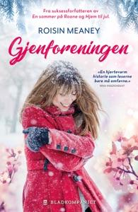 Årstider 4 - Gjenforeningen - Roisin Meaney pdf download