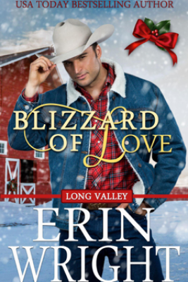 Blizzard of Love – A Western Holiday Romance Novella - Erin Wright