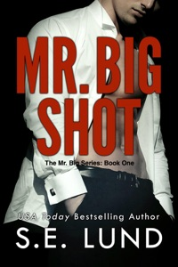 Mr. Big Shot - S. E. Lund pdf download