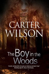 The Boy in the Woods - Carter Wilson pdf download