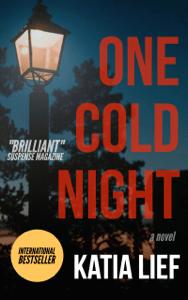 One Cold Night - Katia Lief pdf download
