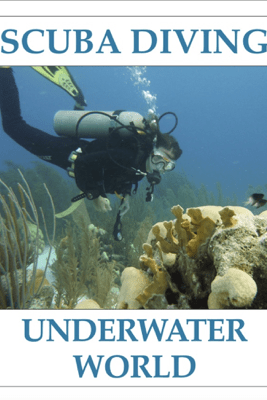 SCUBA DIVING - Underwater World - Mike Seares