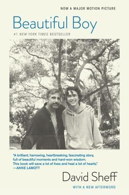 Beautiful Boy - David Sheff pdf download