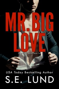 Mr. Big Love - S. E. Lund pdf download