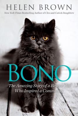 Bono - Helen Brown