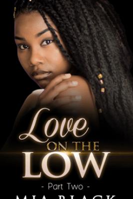 Love on the Low 2 - Mia Black