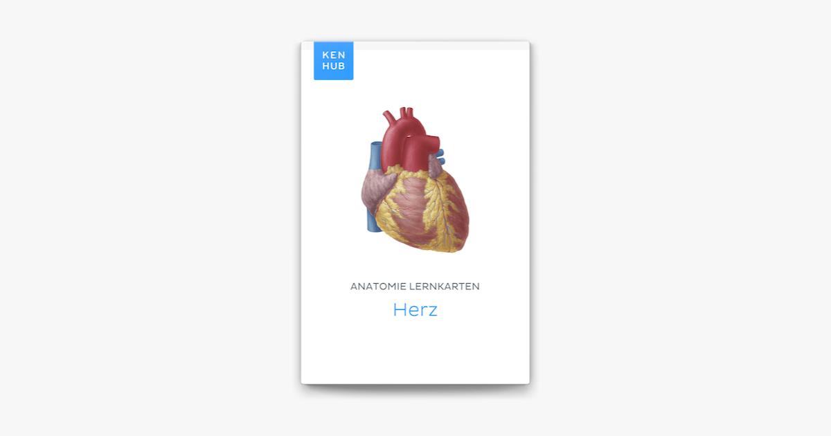 Anatomie Lernkarten: Herz in Apple Books