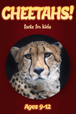 Cheetah Facts For Kids 9-12 - Cindy Bowdoin