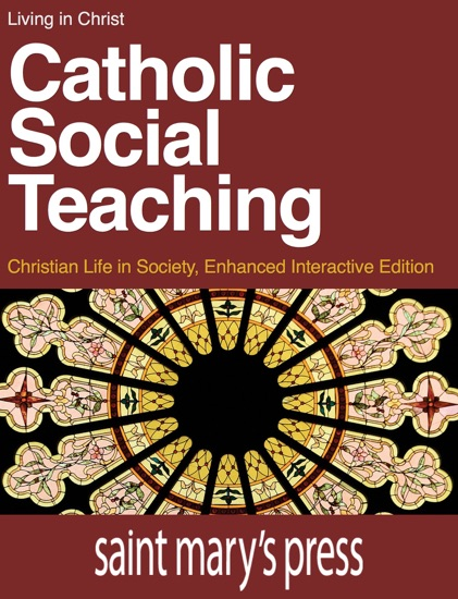 Catholic Social Teaching by Brian Singer-Towns PDF Download