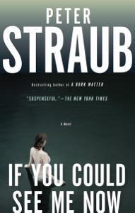 If You Could See Me Now - Peter Straub pdf download