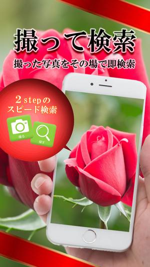 画像で検索- for iPhone Screenshot