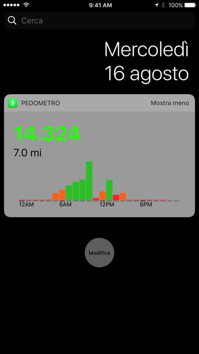 Pedometro++ iPhone