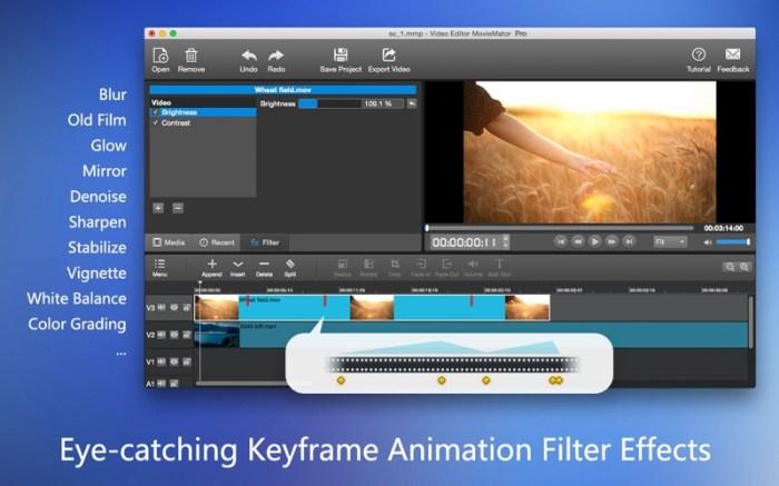 MovieMator Video Editor Pro Screenshot 03 136ue9n