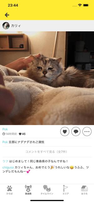 ドコノコ - いぬねこ写真アプリ Screenshot