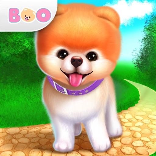 ブー-世界で最もかわいい犬