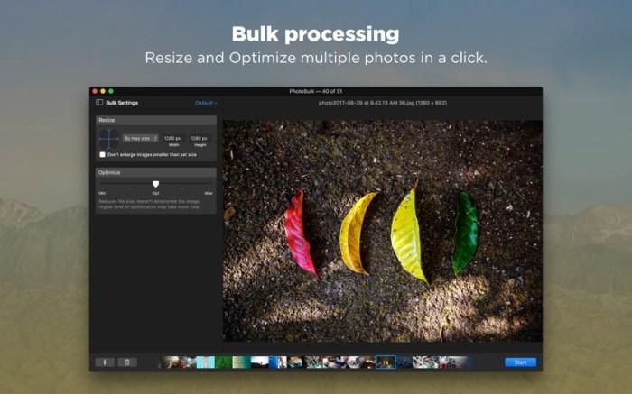PhotoBulk: watermark in batch Screenshot 04 xnj6bn