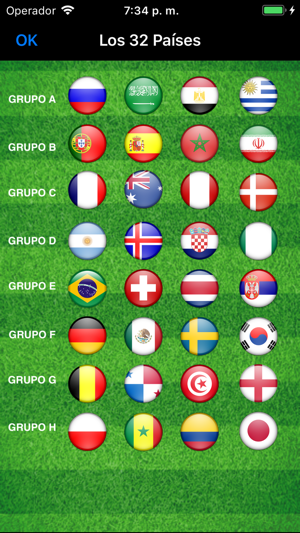 Copa Mundial de Fútbol de 2018 Screenshot
