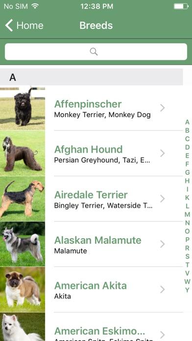 What Dog A Microsoft Garage Project Screenshot