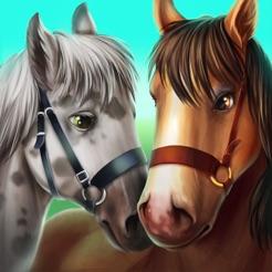 HorseHotel Caballos de cuidado