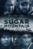 Richard Gray - Sugar Mountain  artwork