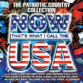 Various Artists - Now That's What I Call the U.S.A. (The Patriotic Country Collection)  artwork