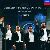 José Carreras, Luciano Pavarotti & Plácido Domingo - The Three Tenors In Concert  artwork