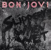 Bon Jovi - Slippery When Wet  artwork