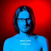 Steven Wilson - To the Bone  artwork