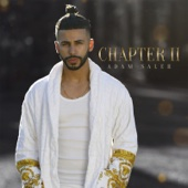 Adam Saleh - Chapter II  artwork