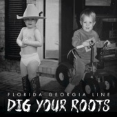 Florida Georgia Line - Dig Your Roots  artwork