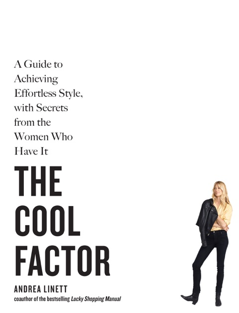 The Cool Factor by Andrea Linett on iBooks