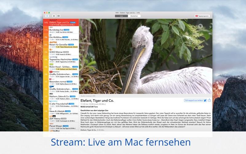 Live TV Screenshot