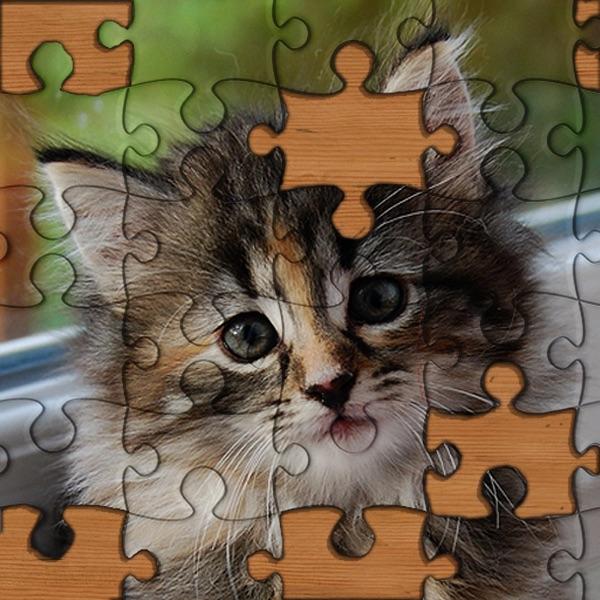 Jigsaw Puzzles!