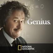 Genius - Genius: Einstein  artwork